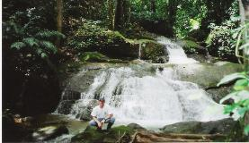 The tranquil jungle grotto waterfall and cascade